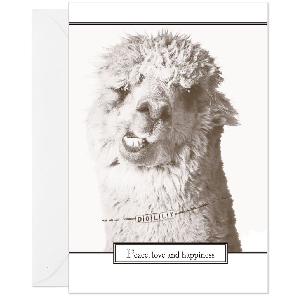Funny Peace Love And Happiness Birthday Card