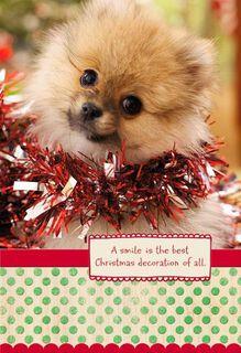 Smiling Dog Christmas Card,