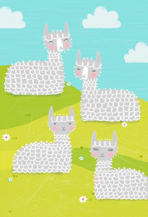 Alpacas on a Grassy Hill Blank Card