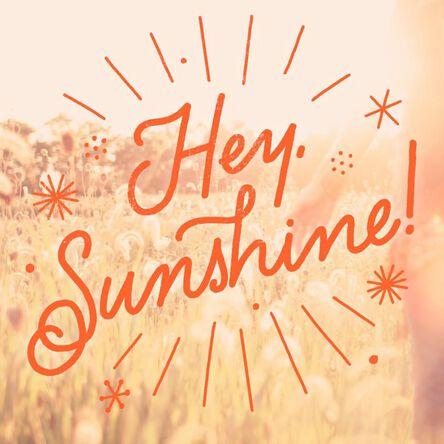 Hey sunshine just because music card greeting cards hallmark hey sunshine just because music card m4hsunfo