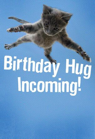 Flying Cat Hug Birthday Card