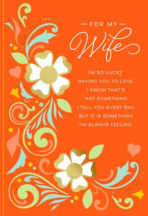 You Mean So Much to Me Anniversary Card for Wife