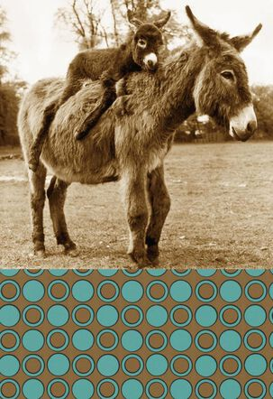 Little Donkey Funny Father's Day Card