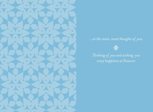 Seder Thoughts of You Passover Card,