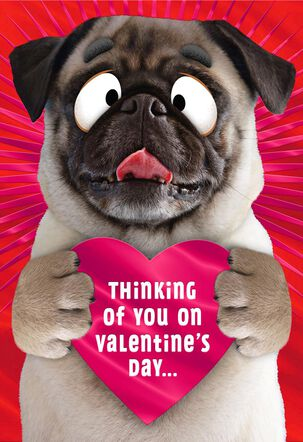 Smoochy Pooch Funny Pop-Up Valentine's Day Card