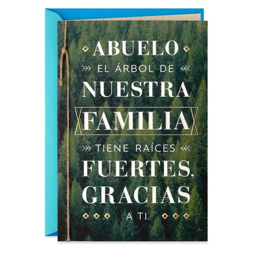 Vida Spanish Cards Gifts Ornaments Hallmark