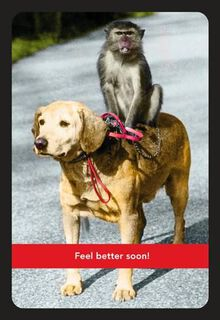 Monkey on Your Back Get Well Card,