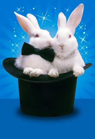 Rabbits in Top Hat Funny Anniversary Card