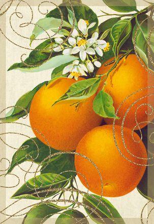 Orange Tree Vintage Design Blank Card