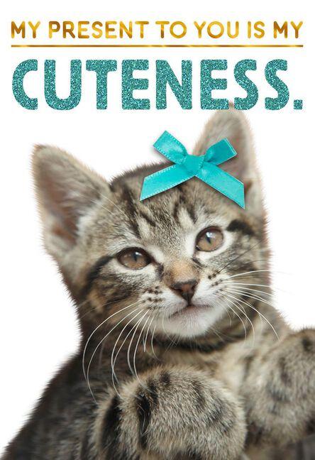 Cuteness Kitten Birthday Card Greeting Cards Hallmark