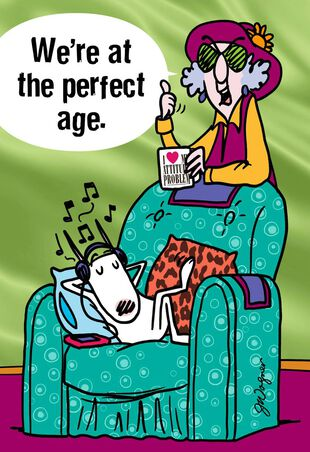 MaxineTM The Perfect Age Funny Birthday Card