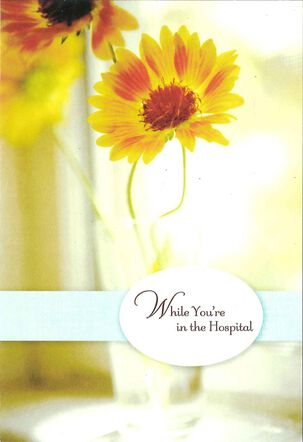 While You're in the Hospital Get Well Card
