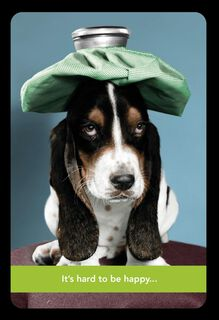 Basset Hound With Ice Pack Get Well Card,