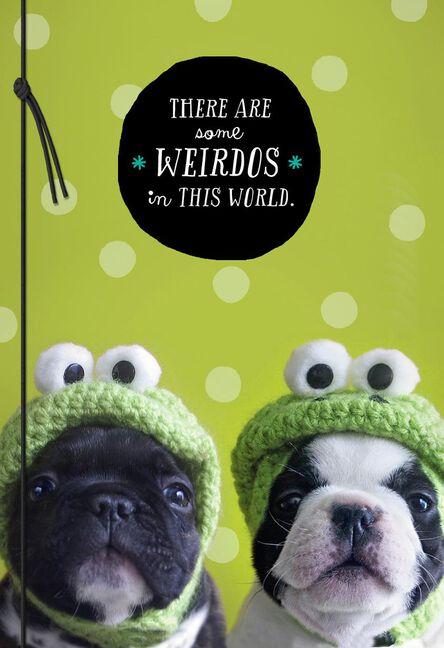 Like A Sister Weirdo Frog Dogs Birthday Card