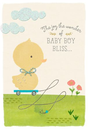 Little Duck New Baby Boy Congratulations Card