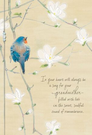 Remembering a Special Grandmother Sympathy Card