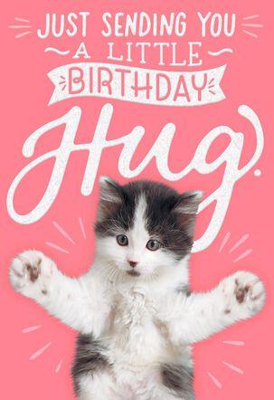 Kitten Hug Birthday Card
