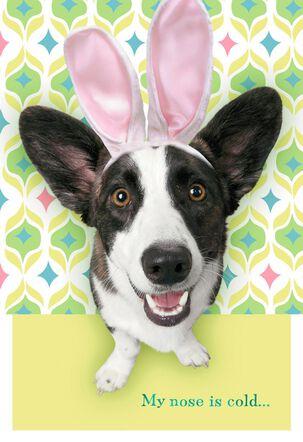 Warm Heart Dog Easter Card
