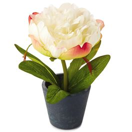 White Potted Peony Decoration, , large