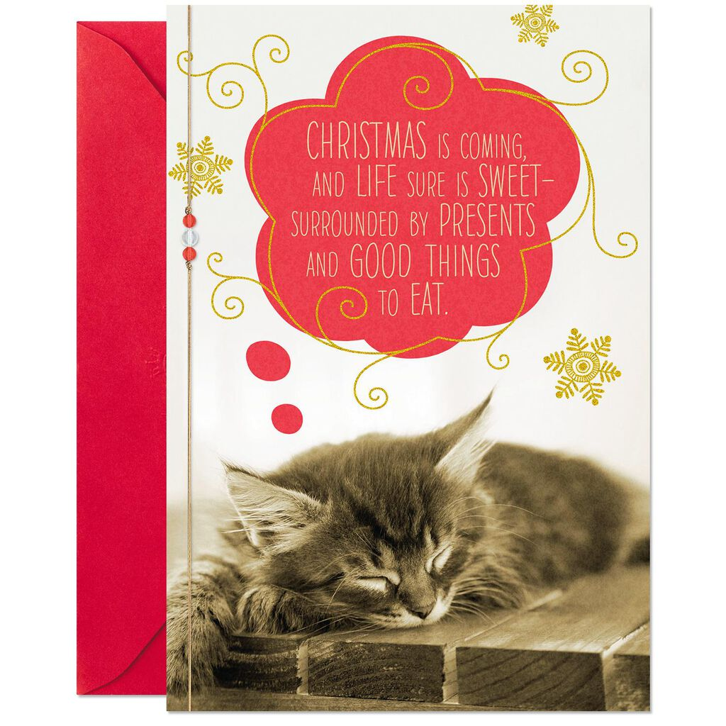 Sweet Dreaming Kitty Christmas Card From the Cat - Greeting Cards ...
