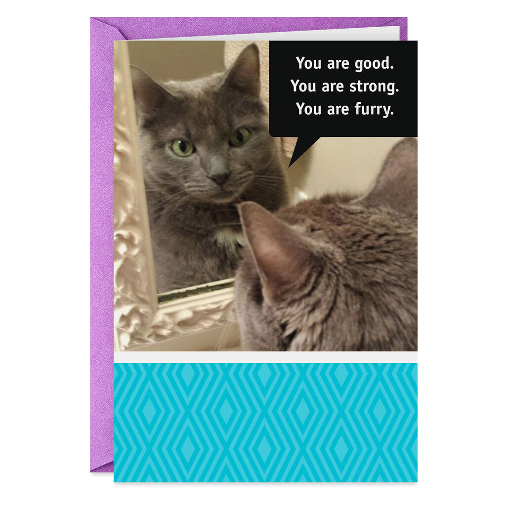 Cat And Mirror Positive Affirmation Funny Birthday Card