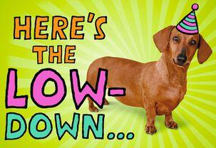 Weiner Dog Musical Birthday Card