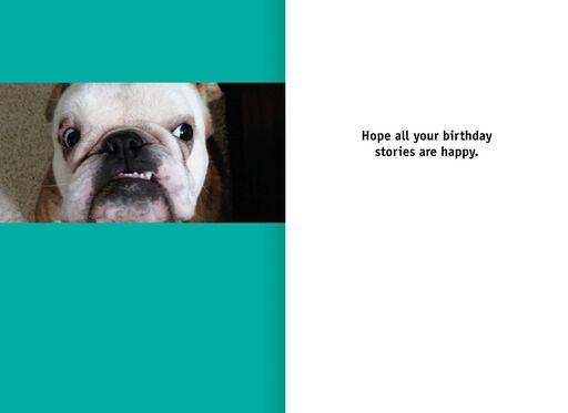 Bulldog Stories Funny Birthday Card,