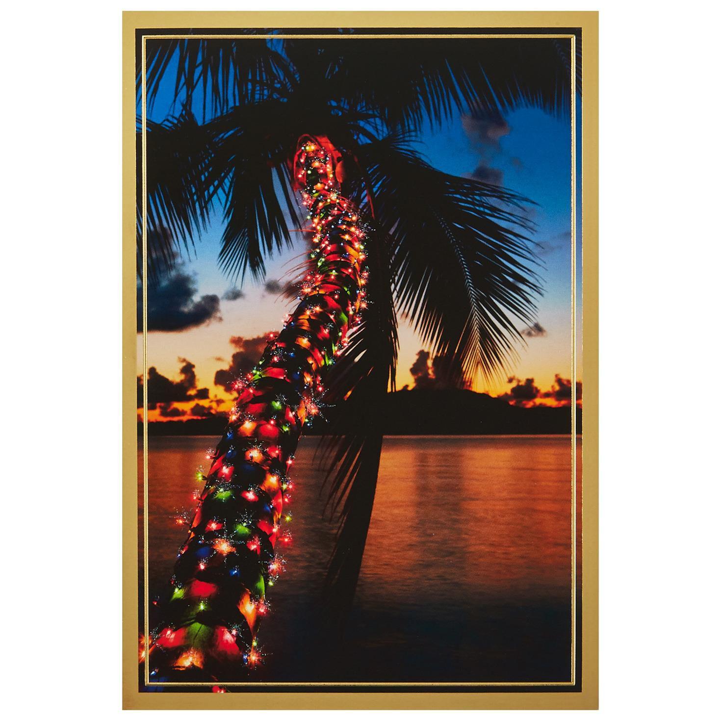 Palm Tree Photo Christmas Cards - rjmovers.com