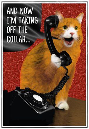 Smitten Kitten Funny Valentine's Day Card