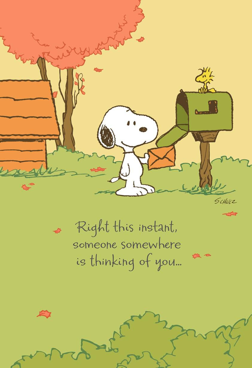 Peanuts® Snoopy™ Missing You Thanksgiving Card - Greeting Cards ...