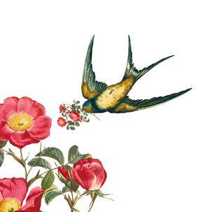 Hummingbird and Flowers Blank Card