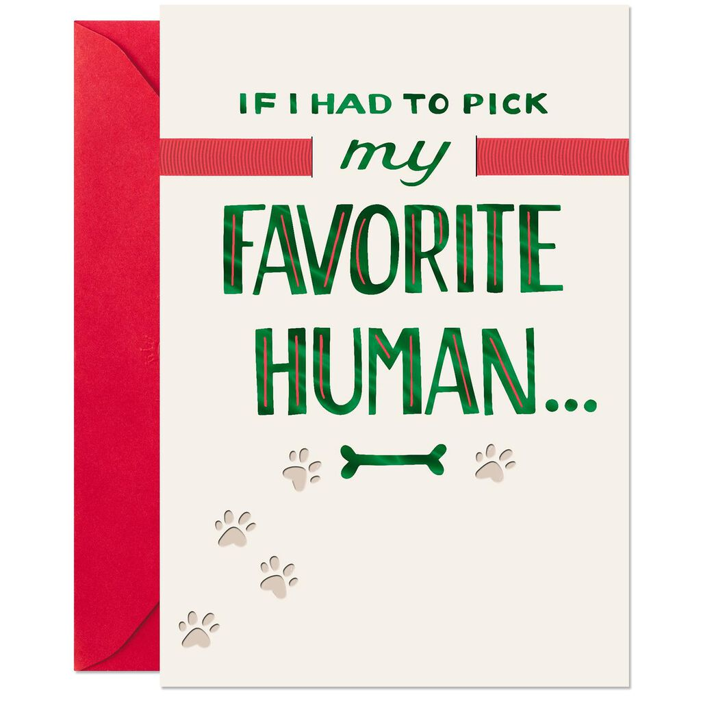 My Favorite Christmas Card >> My Favorite Human Christmas Card From The Dog Greeting Cards