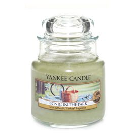 Picnic in the Park Small Jar Candle by Yankee Candle®, , large