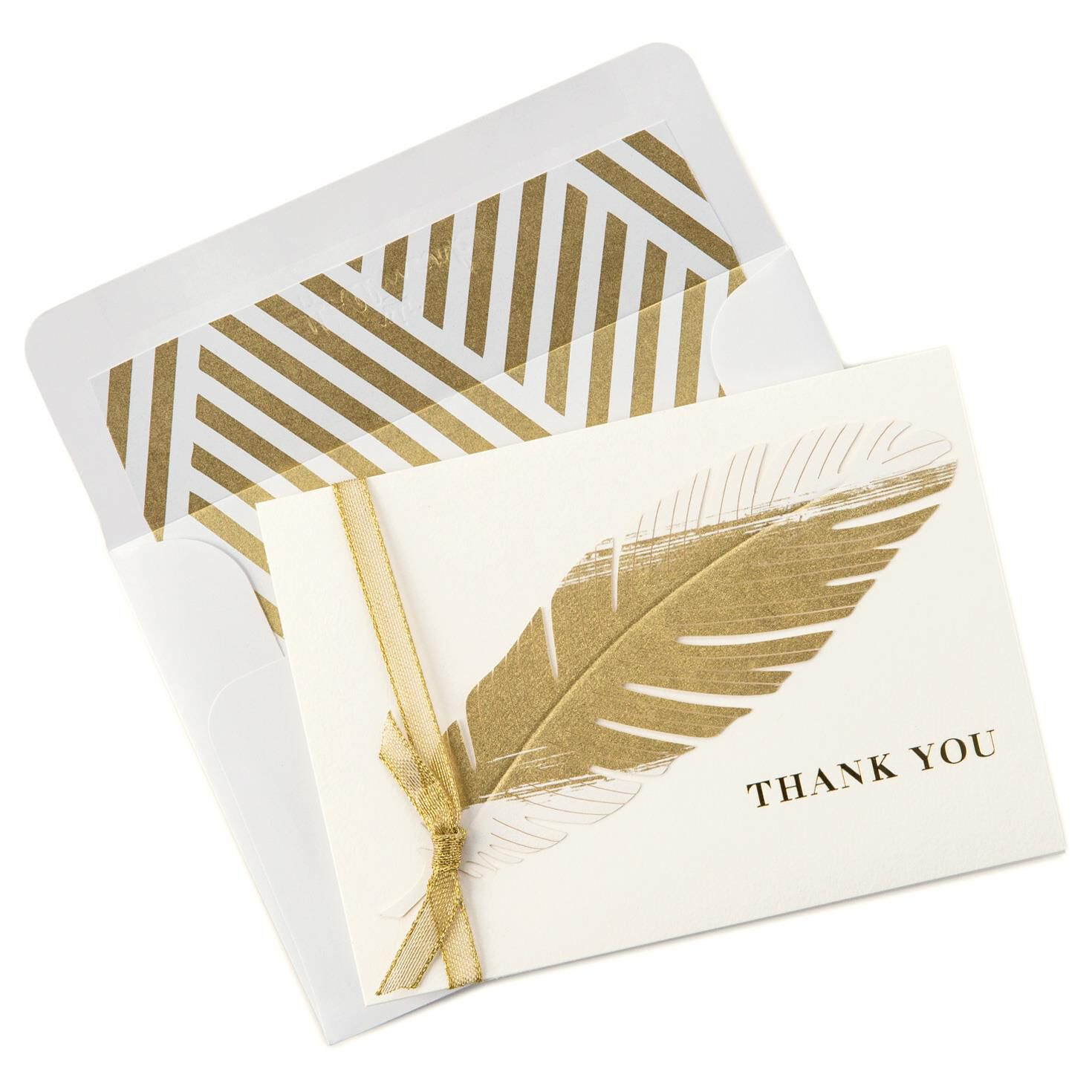 Golden feather thank you notes box of 8 note cards hallmark thecheapjerseys Image collections