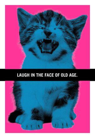 Hissing Kitten Funny Birthday Card
