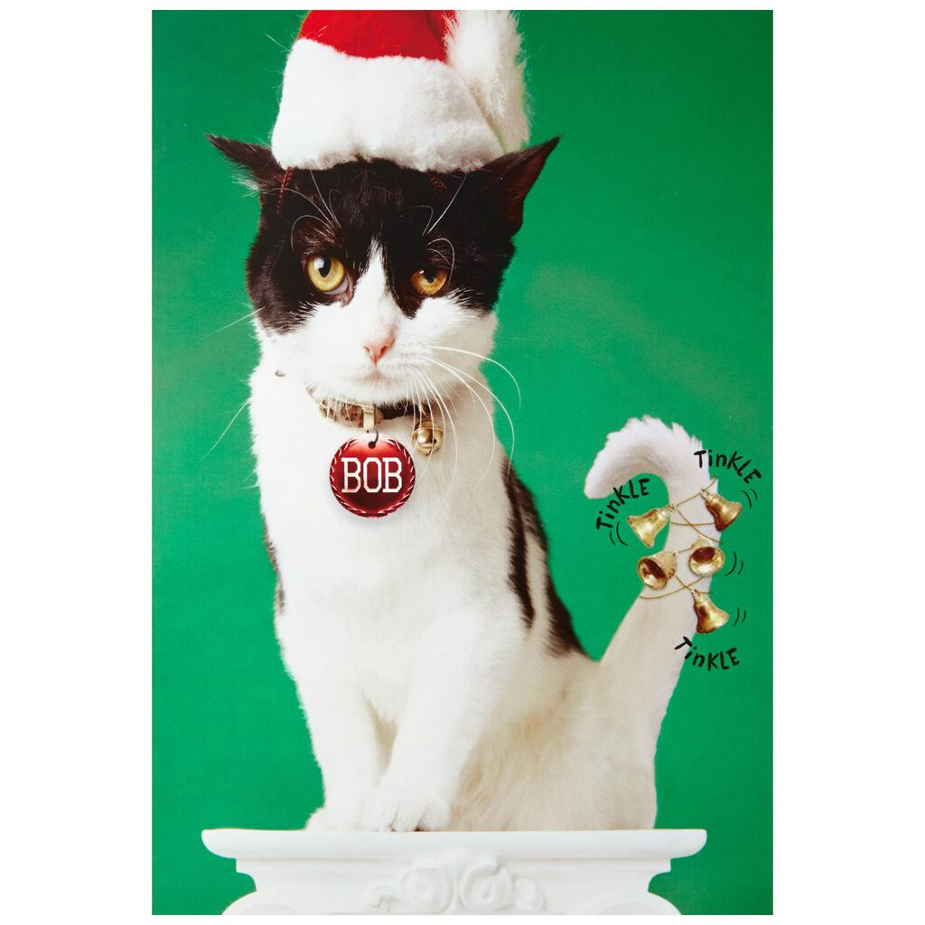 Bells on Bob the Cat\'s Tail Funny Christmas Cards, Box of 16 - Boxed ...