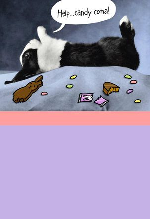 Candy Coma Bunny Funny Easter Card