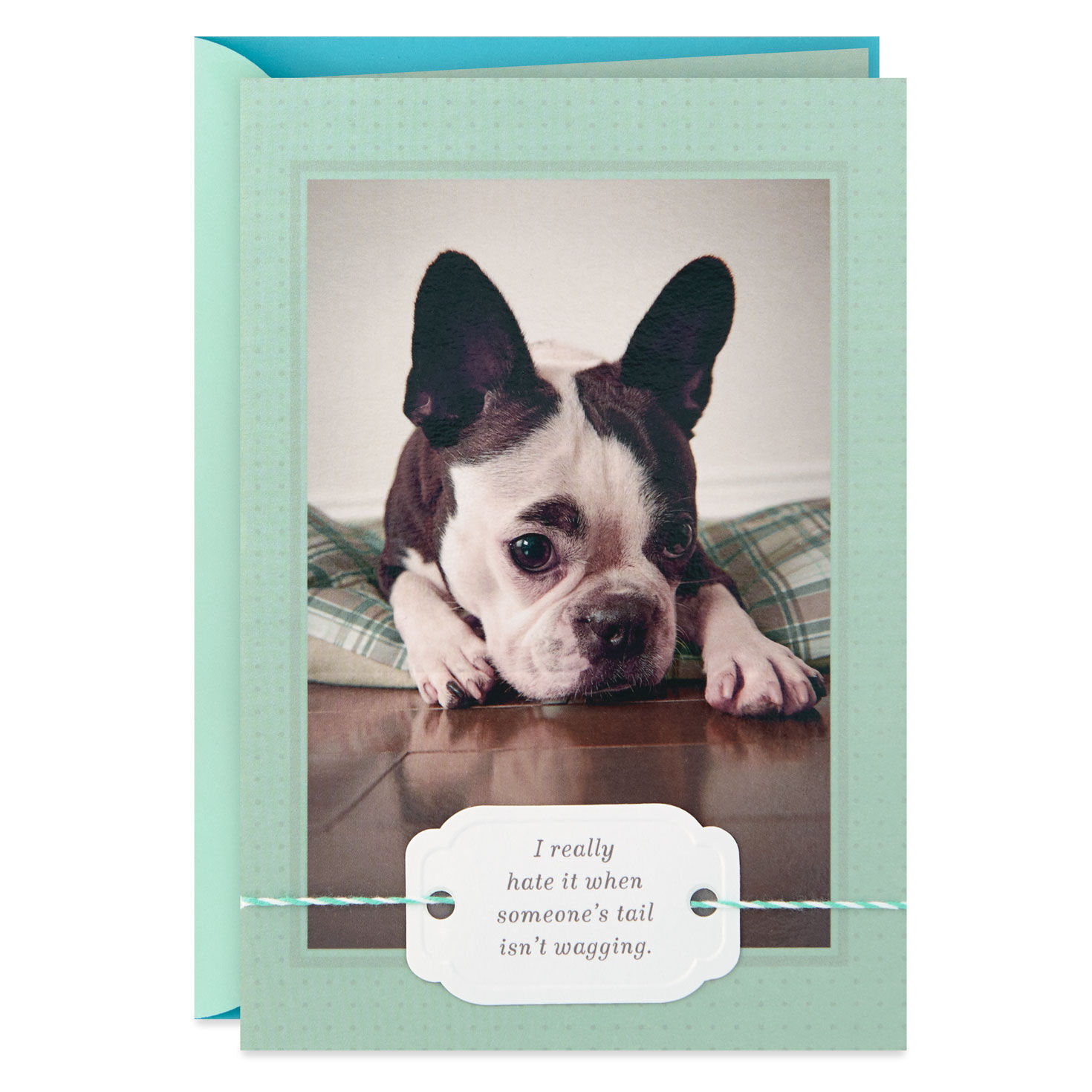 Tail Wag Again Dog Get Well Card