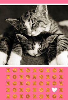 Sleeping Kittens Romantic Sweetest Day Card,