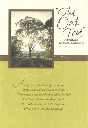 The Oak Tree Encouragement Card