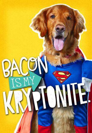 Bacon Is My Kryptonite Birthday Card