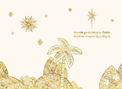 For a Special Family Spanish-Language Christmas Card,