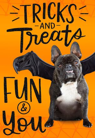 Tricks and Treats Halloween Card