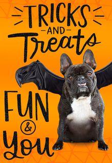 Tricks and Treats Halloween Card,