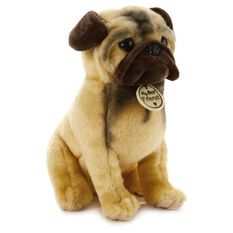 Wrinkly Toy Dog Breed Large Stuffed Animal - Classic