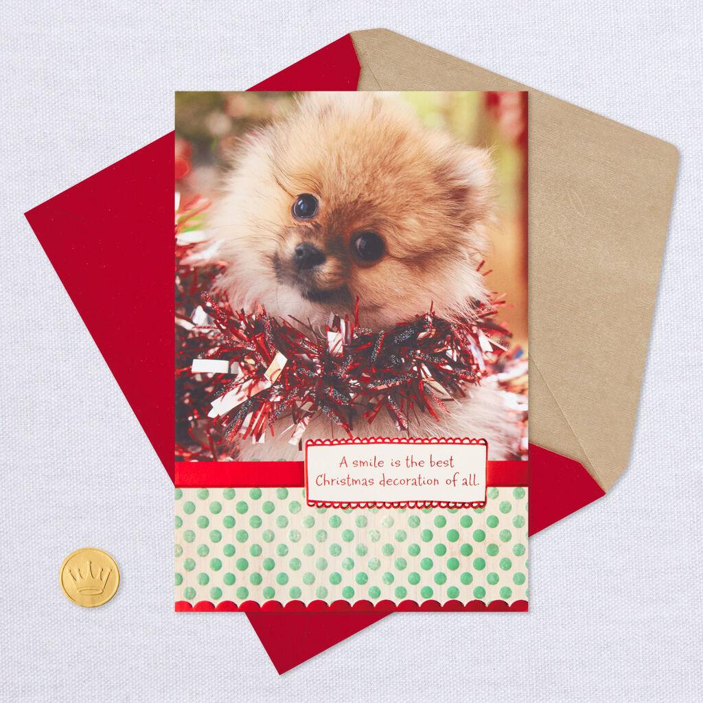 Dog Christmas Card Photo.Smiling Dog Christmas Card