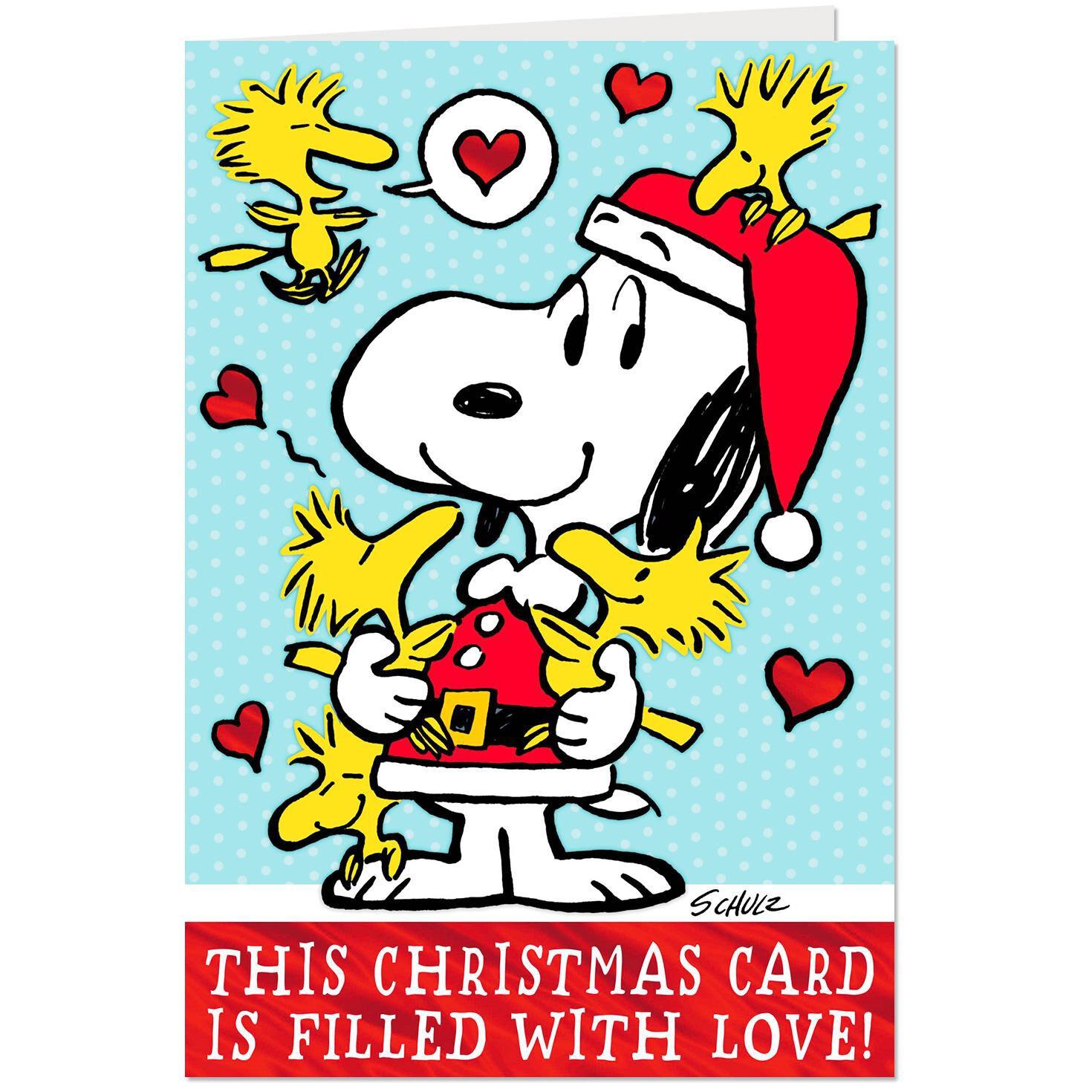 peanuts snoopy and woodstock christmas card with jokes greeting cards hallmark jpg 1470x1470 peanuts woodstock christmas