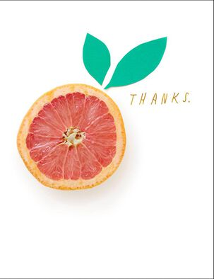 Eternally Grapefruit Thank You Card