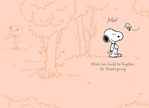 Peanuts® Snoopy™ Missing You Thanksgiving Card,