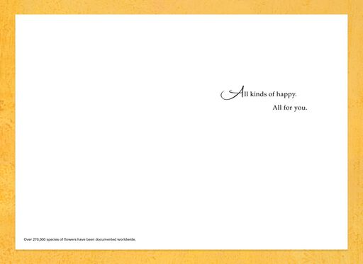 Congratulations Cards Congrats Cards Hallmark